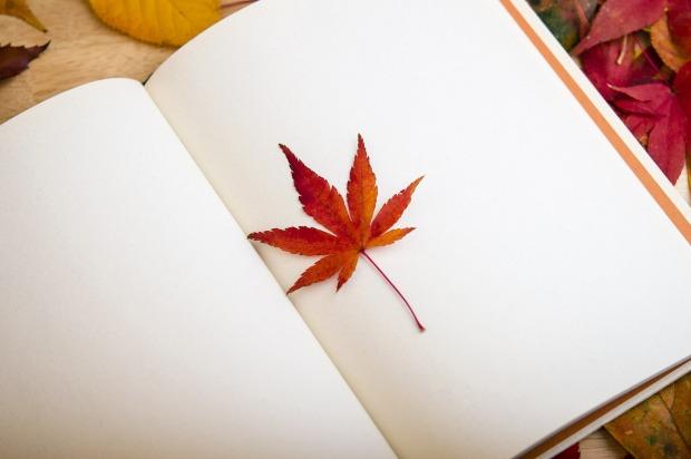 maple-leaf-638022_1920 (1)
